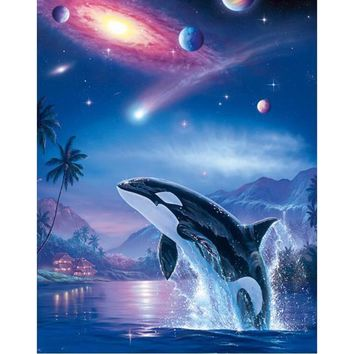 5D Diamond Painting Orca Galaxy Kit