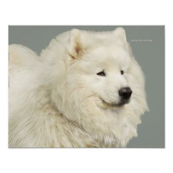 "Samoyed 19"" x 13"", Archival Heavyweight Paper Poster"