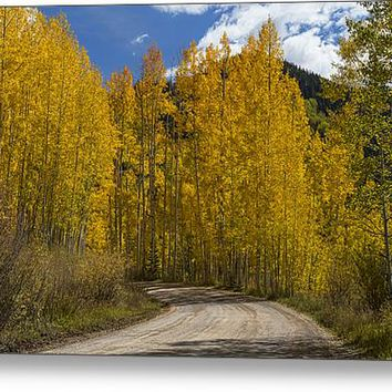 Beautiful Rocky Mountain Back Road Acrylic Print