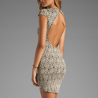 DV by Dolce Vita Betsey Stretch Rose Lace Dress in Nude/Black from REVOLVEclothing.com