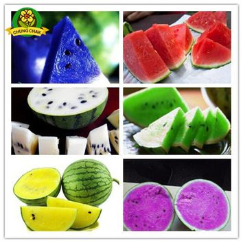 Home Garden Heirloom Watermelon Seeds 50pcs Sweet Taste Fruit Vegetable Seed Plant Blue Yellow Green Colored Watermelons