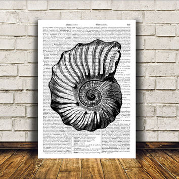 Beach house decor Seashell poster Marine print Nautical art RTA397