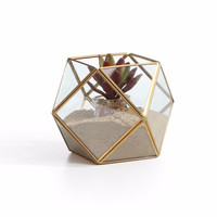 DanyaB Polyhedral Brass and Glass Terrarium