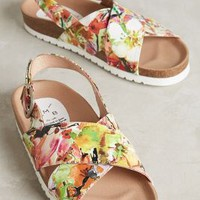KMB Flowerfield Slingbacks in Novelty Size: