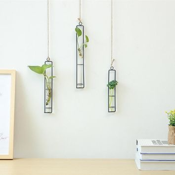 Go Green Wall Hanging Hydroponics Plant Vases