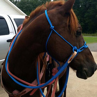 Attitude CHAINger SIDE PULL Riding Halter (slobber straps and reins not included) American made.