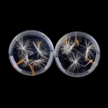 Women Double Flared Ear Plug Smooth Acrylic Dandelion Clear Piercing Ear Expander