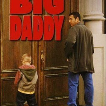 Big Daddy (Widescreen / Full Screen) - DVD (Pre-owned)