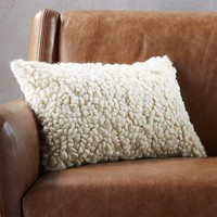 "18""x12"" toodle pillow"