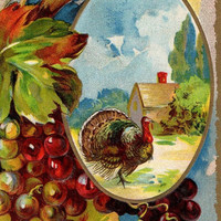 Colorful Antique AMP Thanksgiving Greetings Postcard 1910