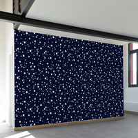 Star Night Wall Mural