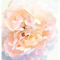 Peony Art Print by Charming Ink | Society6