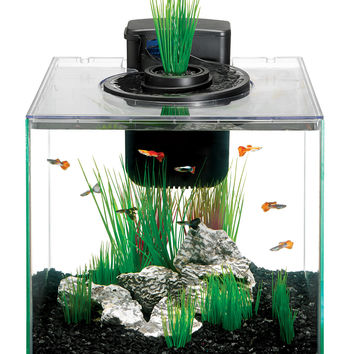 Aqueon Aqua Springs Aquarium Tank Kit 8.8 gal