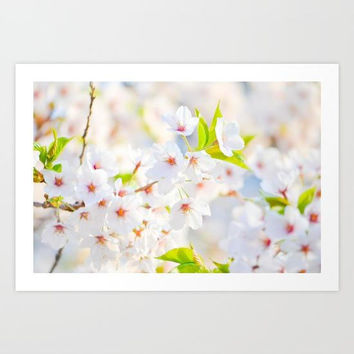 White Flowers Art Print, Beautiful White Flowers Wall Art, Floral Wall Art, Romantic Floral Artwork, White Flowers Art Print, Minimal Floral