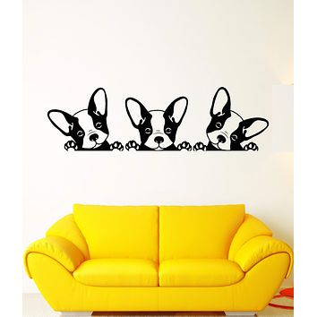 Vinyl Wall Decal Puppies Pets French Bulldog Animals Stickers Unique Gift (1610ig)
