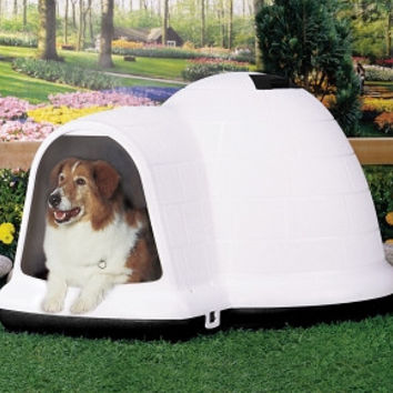 Petmate Indigo Dog House - Large