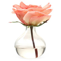 "7"" Rose in Bubble Vase, PinkTHE FRENCH BEE"