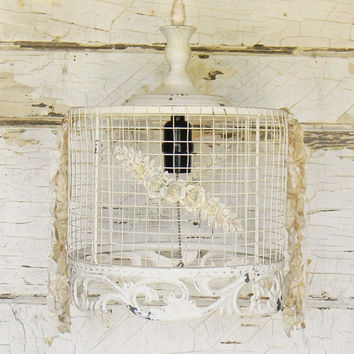 Best Hanging Wire Basket Products on Wanelo