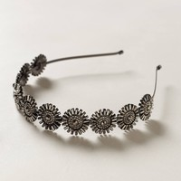 Helianthus Headband