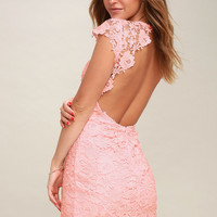 Romance Language Blush Pink Backless Lace Dress