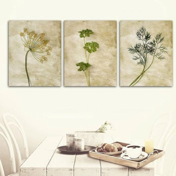 Neutral Kitchen Wall Decor, Herbs Kitchen Art, Botanical Fine Art Prints, Vintage Gallery Wall, Slim Wrap Prints Set, Ready-to-Hang Art