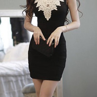 Black V-Neck Lace Bodycon Mini Dress