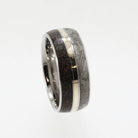 Meteorite Wedding Band / Titanium Ring inlaid with Meteorite Dinosaur Bone and 14K Yellow Gold