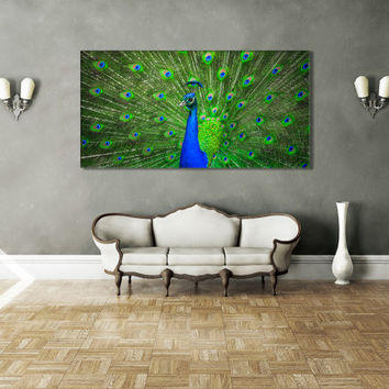 Peacock Print Wall Art / Peacock Art Print Decor Bird Wall Art / Colorful Wall Art Peacock Feathers Wall Hanging / Wildlife Bird Wall Art