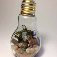 Recycled Wolf Pup Light bulb Terrarium