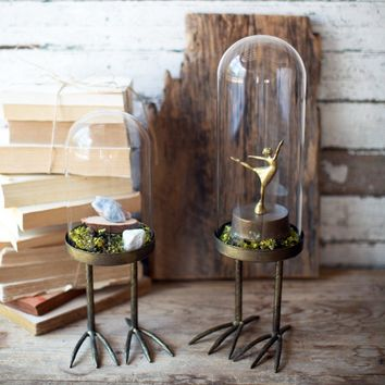 Glass Cloches With Metal Bird Feet (Set of 2)