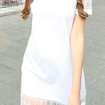 White V-Neck Mesh Mini A-Line Dress
