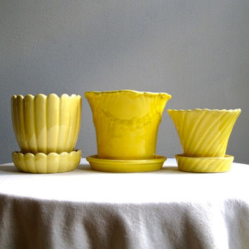 Vintage Planter Instant Collection - Three American Pottery Flower Pots in Yellow