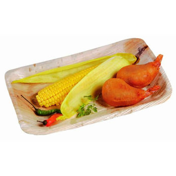 Case - Rectangular Palm Leaf Plate