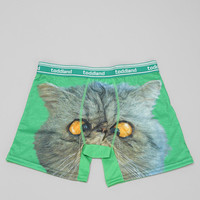 toddland Cross-eyed Cat Boxer Brief - Urban Outfitters