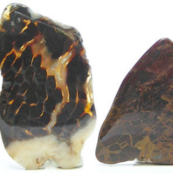 3 Polished Agates Mini Rock Slices for Jewelry Making Wire Wrapping Stones Free US SHip