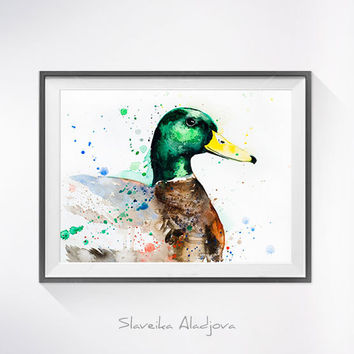 Original Watercolour Painting- Mallard Duck art, animal, illustration, animal watercolor, animals paintings, animals, portrait,