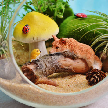 Fox Bird Terrarium Kit~ Fox and Bird on a Log ~ Air Plant Terrarium ~ Large Glass Terrarium ~ 2 Air Plants ~ Sand choice ~ Gift ~ Birthday