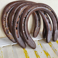 Good Luck Horseshoe, Man Cave Western Decor, Rusty Patina Aged Horseshoe, Worn On Real Horse, Cowboy Decor, Hang For Luck, Office Decor