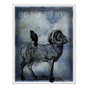 True North Big Horn Sheep And Crow Art Poster