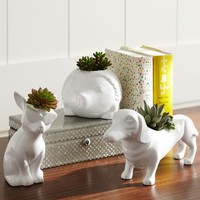 Novelty Planters