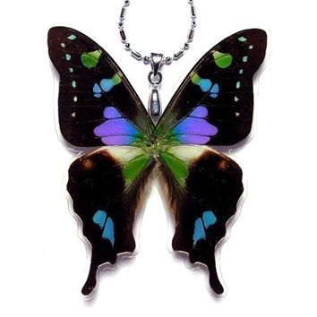 Real Butterfly Wing Necklace / Pendant (WHOLE Graphium Weiskei Purple Spotted Butterfly - W019)  - Buy 2 Get 1 Free