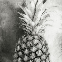 Pineapple Black and White by Andrea Anderegg Photography