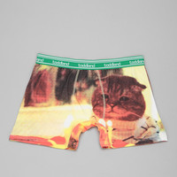 toddland Kitty Birthday Boxer Brief - Urban Outfitters