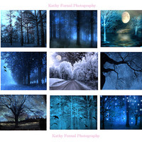 "Nature Photography, Surreal Dreamy Blue Fantasy Nature, Sparkling Twinkle Lights Trees, Set of Nine Fantasy Nature Photos Wall Art 5"" x 7"""
