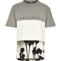 River Island MensGrey Boxfresh block palm tree print t-shirt