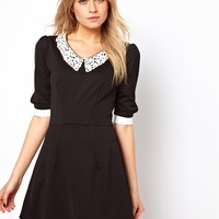 Love Skater Dress With Contrast Collar