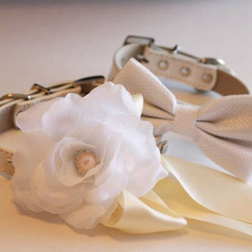 White Ivory Wedding dog collars,2 dog collars,White Floral dog Collar and White Dots Bow tie- White Ivory Wedding dog accessory