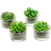 Assortment of 4 Mini Green Desert Succulent Plants Shaped Candles / Tea Lights Table / Mantle Decorations