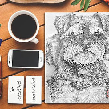 Adult Coloring Page, dog, coloring pages, Instant download coloring, terrier coloring, coloring book, Best selling, Printable coloring page