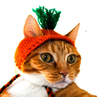 Cat Party Hat - Orange and Green - Hand Knit Cat Costume